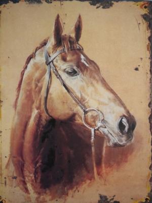 VACKER PLÅTTAVLA - HORSE